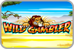 Wild Gambler